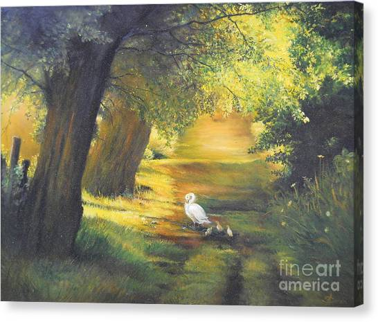 A Ray Of Sunshine  Canvas Print