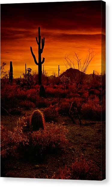 A Red Desert  Canvas Print