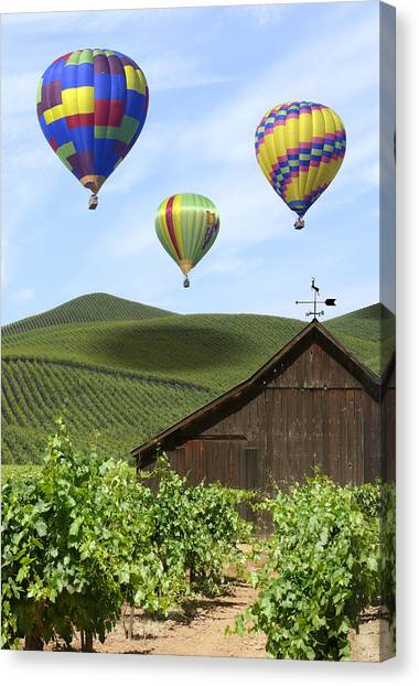 Wine Country Canvas Print - A Ride Through Napa Valley by Mike McGlothlen