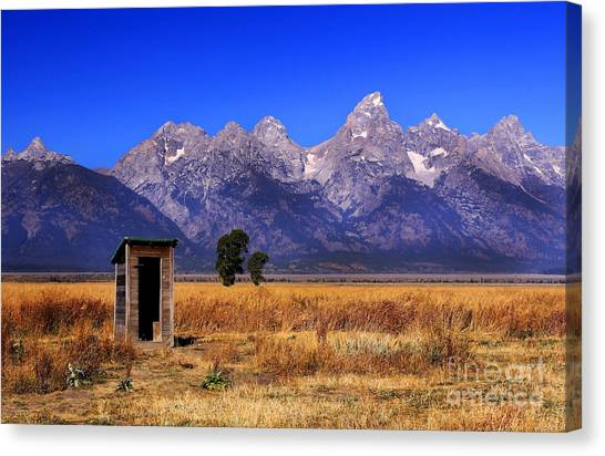 A Room With Quite A View Canvas Print