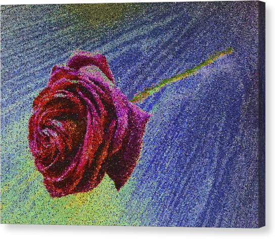 A Rose For You From Kenneth James Canvas Print