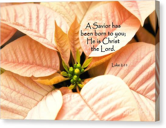 A Savior Has Been Born To You He Is Christ The Lord Canvas Print