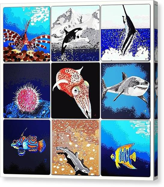 Squids Canvas Print - A #seacreatures Collage Of Nine Of My by David Burles