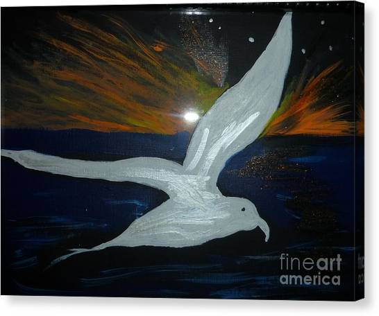 A Seagull At Night Canvas Print by Marie Bulger