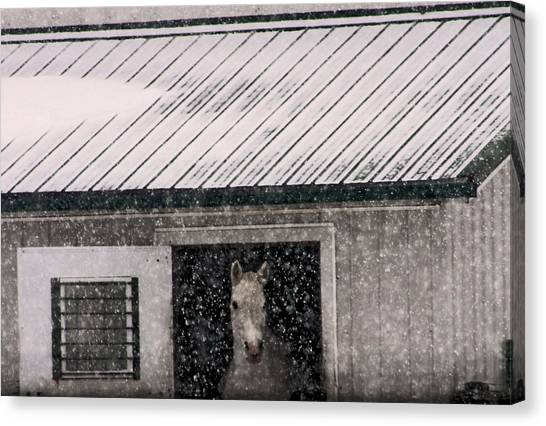 A Snowfall At The Stable Canvas Print