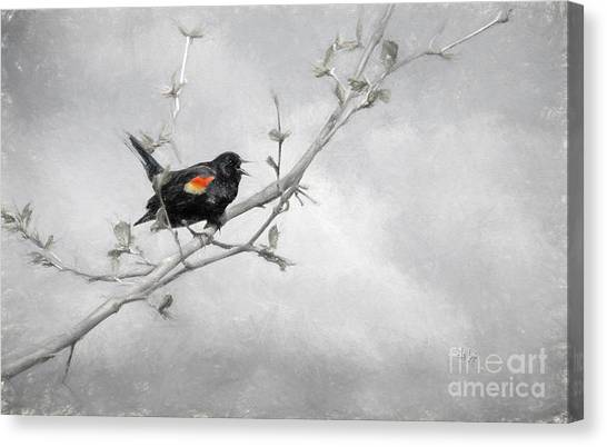 Singing Canvas Print - A Song Of Spring by Lois Bryan