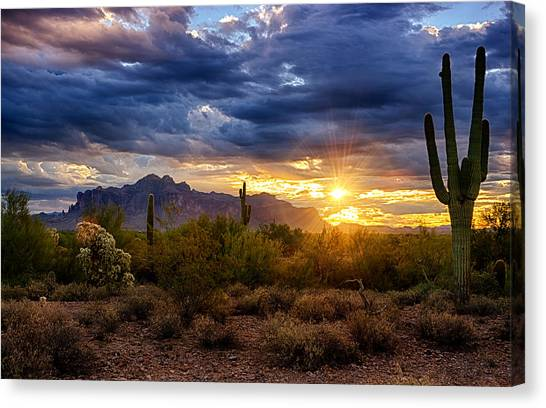 Sonoran Desert Canvas Print - A Sonoran Desert Sunrise by Saija  Lehtonen