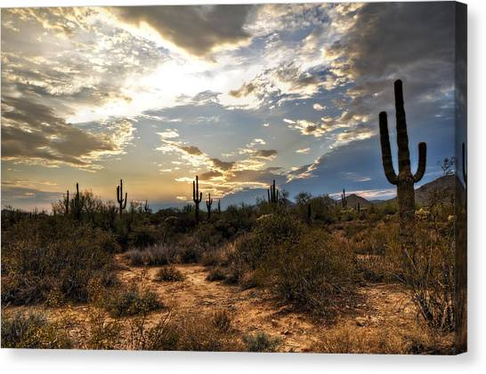 Sonoran Desert Canvas Print - A Sonoran Desert Sunset  by Saija  Lehtonen