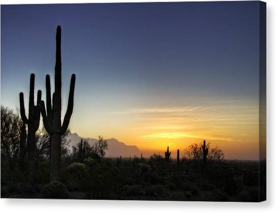A Sonoran Sunrise  Canvas Print