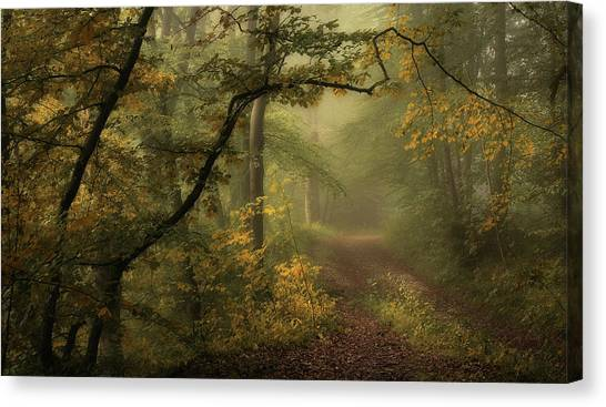 Destinations Canvas Print - A Sorrow Beyond Dreams / Color by Norbert Maier