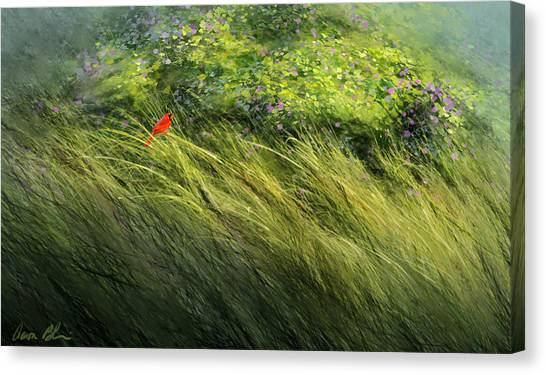 Cardinal Canvas Print - A Spot Of Red by Aaron Blaise