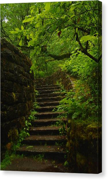 A Stairway To The Green Canvas Print
