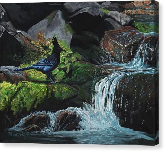 Bluejays Canvas Print - A Stellar Blue Jay Day by Timithy L Gordon