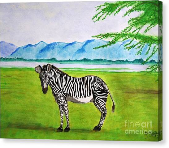 A Striped Chap Canvas Print