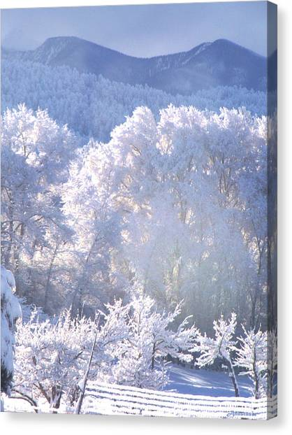 A Study In Frosty Hues Of Winter Whites And Blues Canvas Print