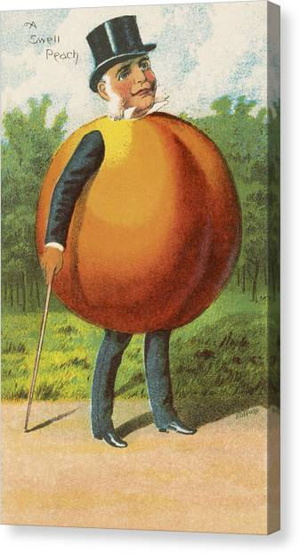 Vegetable Garden Canvas Print - A Swell Peach by Aged Pixel