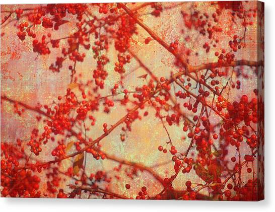 A Tangle Of Fruited Branches Canvas Print