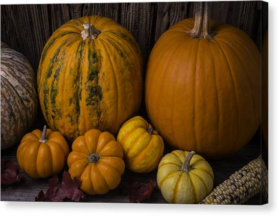 Indian Corn Canvas Print - A Thankful Harvest by Garry Gay