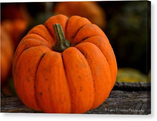 A Thanksgiving Pumpkin Canvas Print