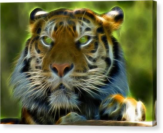 Clemson University Canvas Print - A Tiger's Stare II by Ricky Barnard