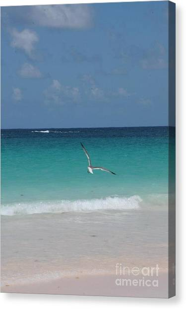 Eleuthera Art Canvas Print - A Touch Of Heaven by Robert Gallery