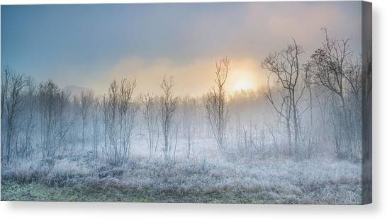 Frost Canvas Print - A Touch Of Winter by Burger Jochen