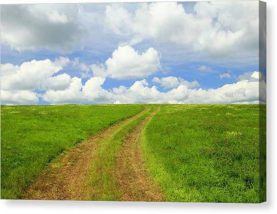 A Trail To The Horizon Canvas Print