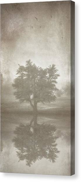 Manipulation Canvas Print - A Tree In The Fog 3 by Scott Norris