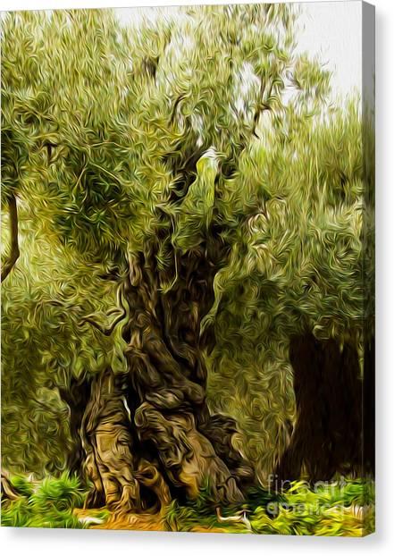 A Treesome Canvas Print