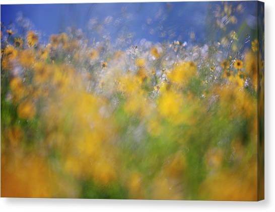 Old Masters Canvas Print - A Tribute To Monet by Andrew George