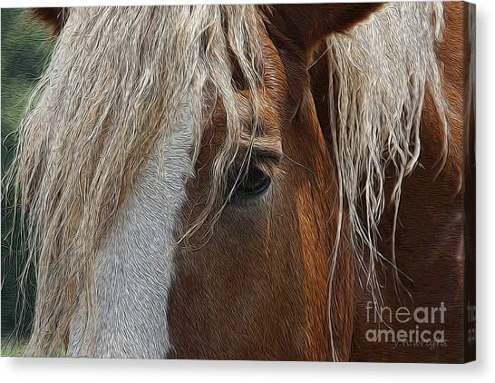 A Trusted Friend Canvas Print