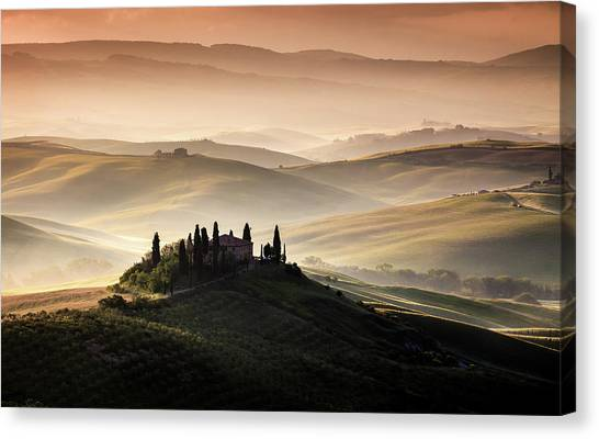 Cypress Canvas Print - A Tuscan Country Landscape by Sus Bogaerts