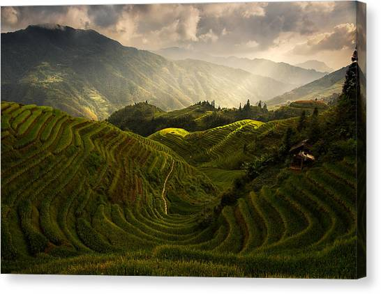 Rolling Hills Canvas Print - A Tuscan Feel In China by Max Witjes