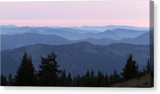 A View From Timberline Canvas Print