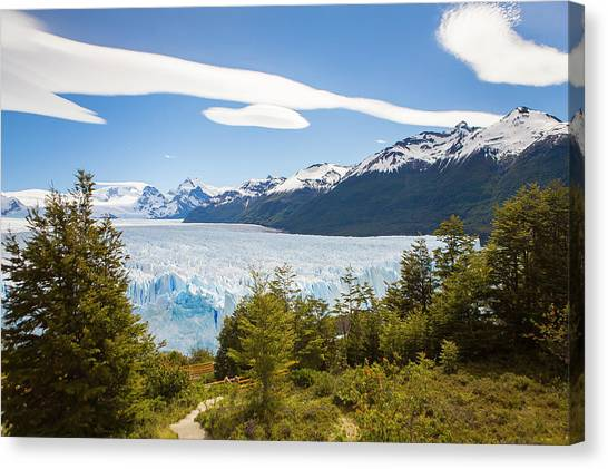 Perito Moreno Glacier Canvas Print - A View Looking Through The Trees by Mike Theiss