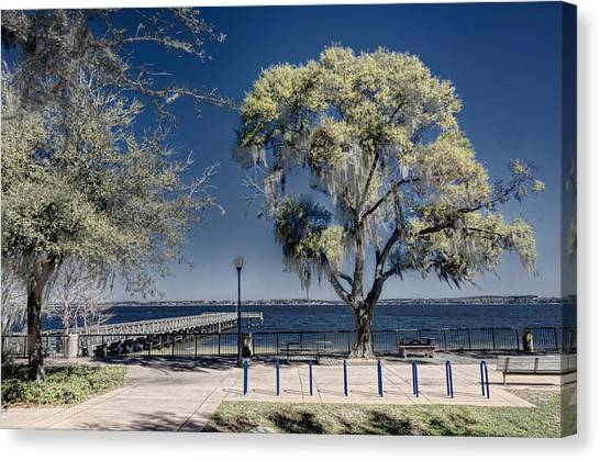 A View Of Lake Minneola Canvas Print