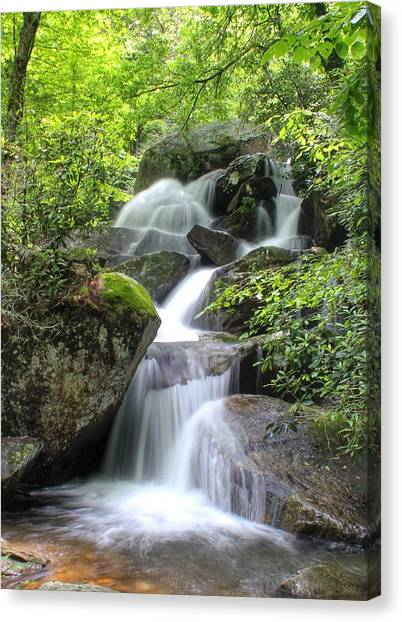 A Walk Along The Jacob Fork Canvas Print