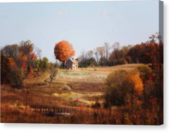 A Walk In The Meadow Canvas Print