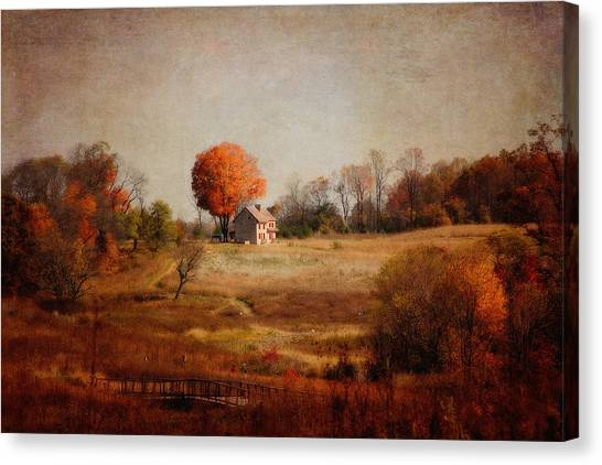 A Walk In The Meadow With Texture Canvas Print