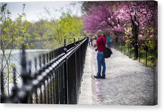 A Walk In The Park Canvas Print by Chris Halford