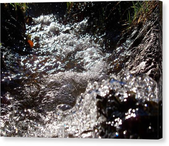 A Watery Dance Of Reflected Light Canvas Print