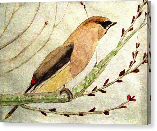 A Waxwing In The Orchard Canvas Print