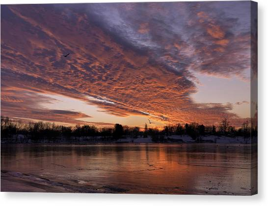 A Westward Pull Canvas Print
