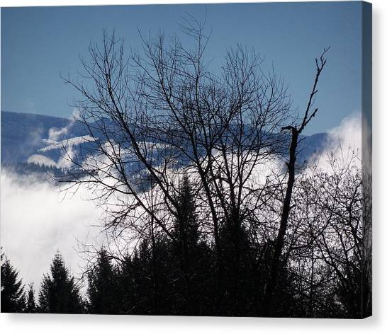 A Winter Day Reaching For The Sky Canvas Print