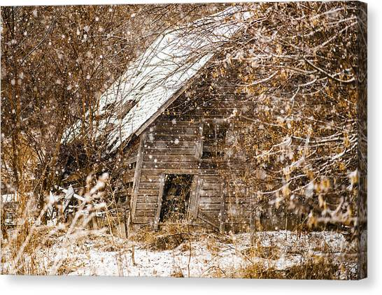 Canvas Print featuring the photograph A Winter Shed by Edward Peterson