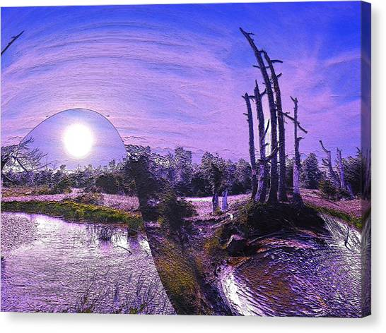 A World Within A World  Canvas Print