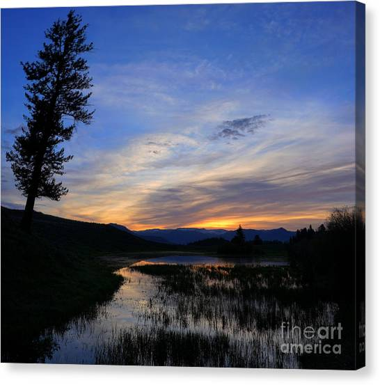 A Yellowstone Lake Before Sunrise Canvas Print
