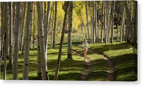 Teton National Forest Canvas Print - A Young Woman Runs Through A Wide Aspen by David Stubbs