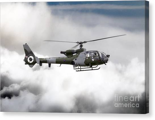 Aac Canvas Print - Aac Gazelle Xx453  by J Biggadike