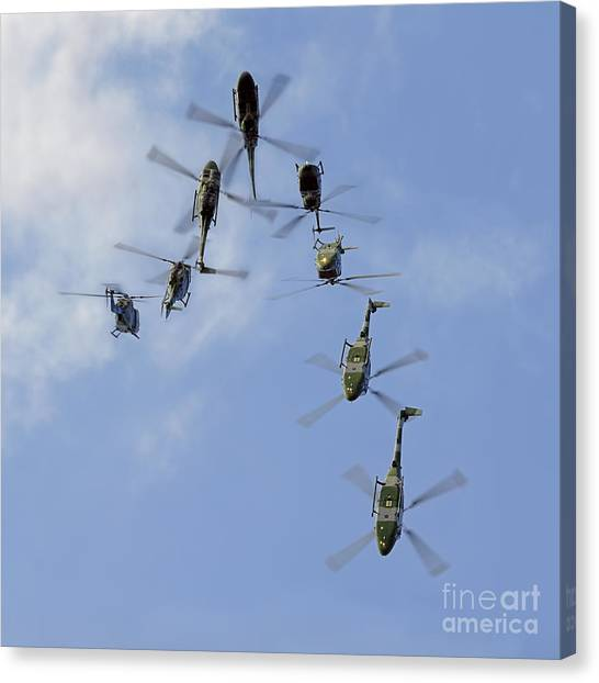 Aac Canvas Print - Aac Lynx Backflip - The Last Time by Steve H Clark Photography